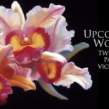 Workshop: Oil Painting with Vicki Penney-Rohner (Cancelled)