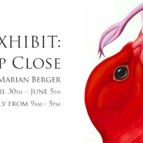 New-Exhibit-UpClose