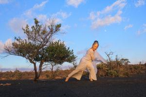 Ka'u_Desert_Smile Karen Masaki by Robert Frutos