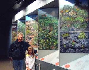 john dawson national parks illustrations
