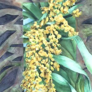 Hawaiian Dracaena