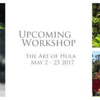 Workshop-Hula