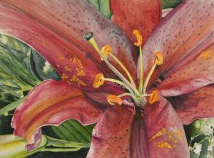 Drop Flower by Nancy Delucrezia