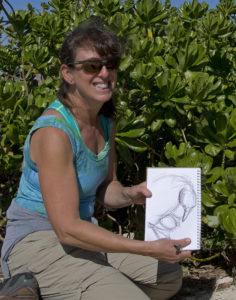 Midway-Caren sketching laysanalbatross-photo by Dan Clark-USFWS