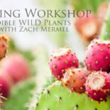 Workshop: Wild Edibles