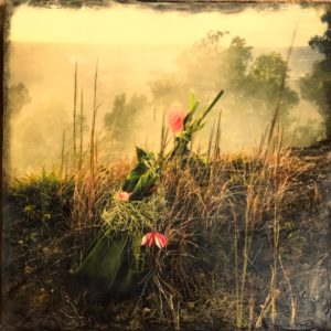 Offering, photo encaustic by Robin Scanlon