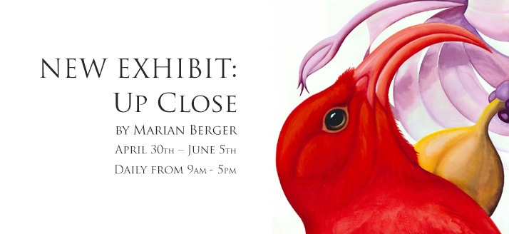 New Exhibit: Up Close at Volcano Art Center