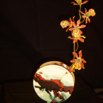 lava-scape-orchid-vase-Shannon-Hickey