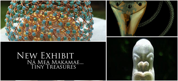 New Exhibit: Nā Mea Makamae…Tiny Treasures