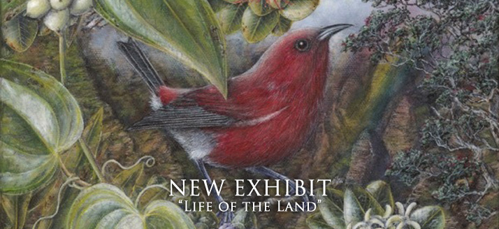 New-Exhibit-Life-of-the-Land
