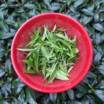 Community Tea Cup Fundraiser