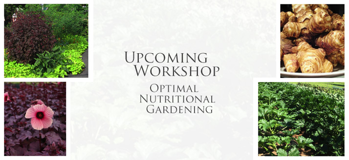 Workshop-Optimal-Nutritional-Gardening