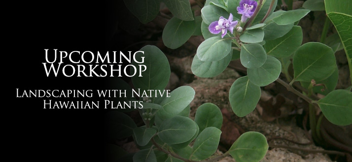 Workshop: Native Hawaiian Plant Landscaping