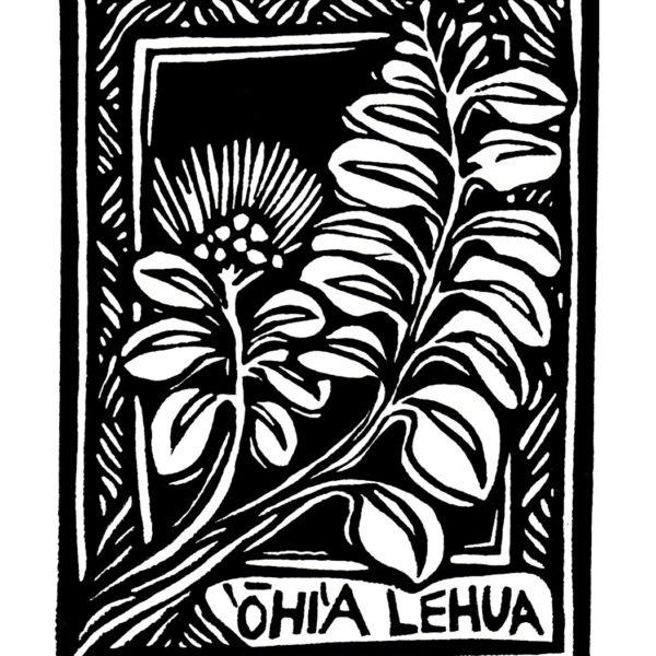 Ohia Lehua_Loebel-Fried