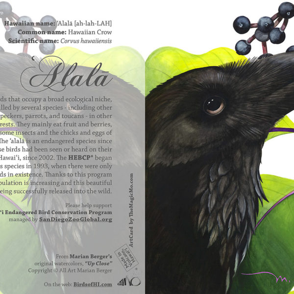 Alala Card 5×7