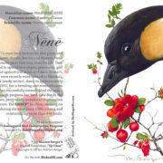Nene Card 5×7