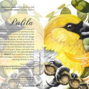 Palila Card 5×7